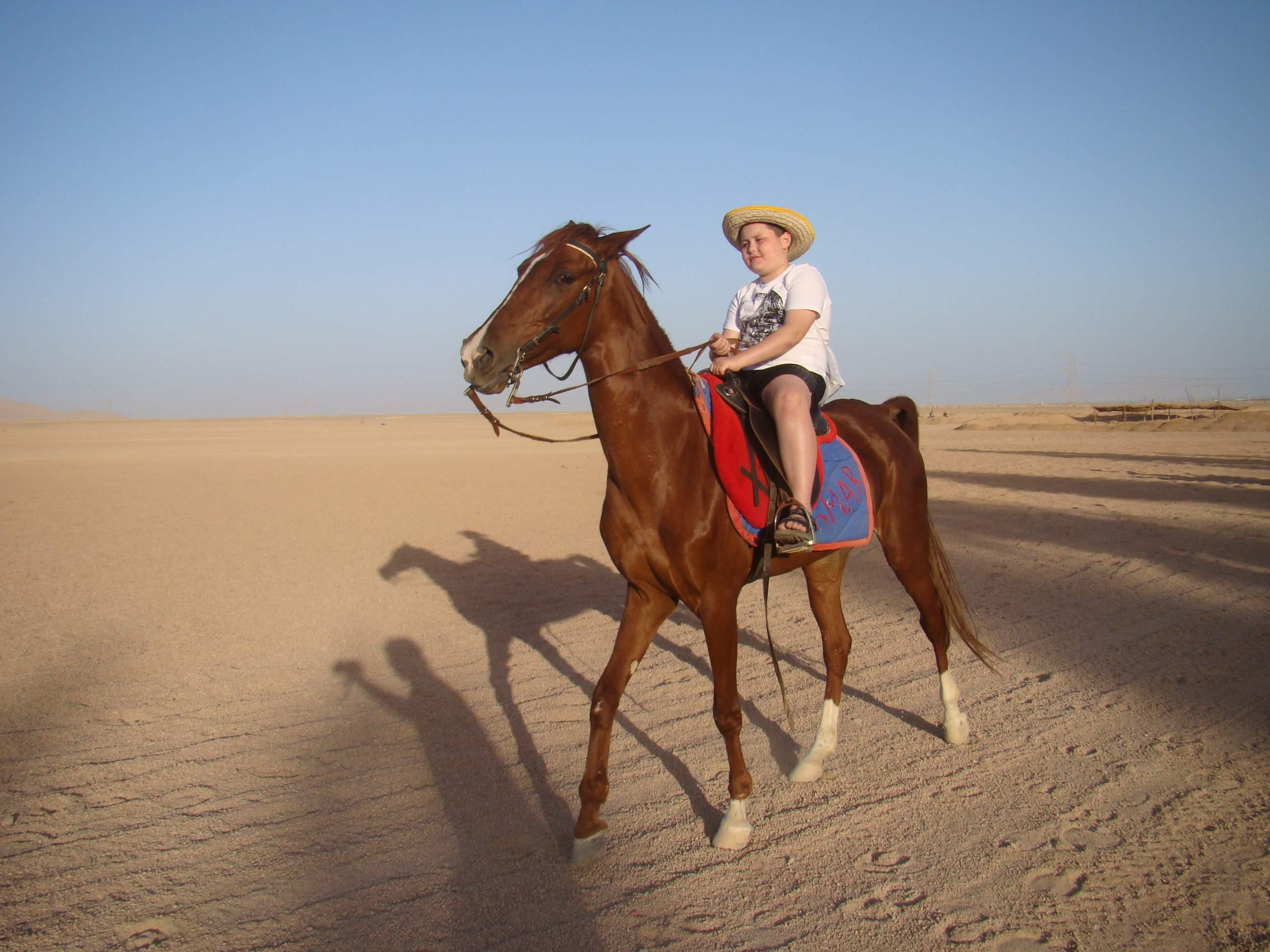 Reiten und Schwimmen mit den Pferden in Makadi bay und Sahl Hasheesh