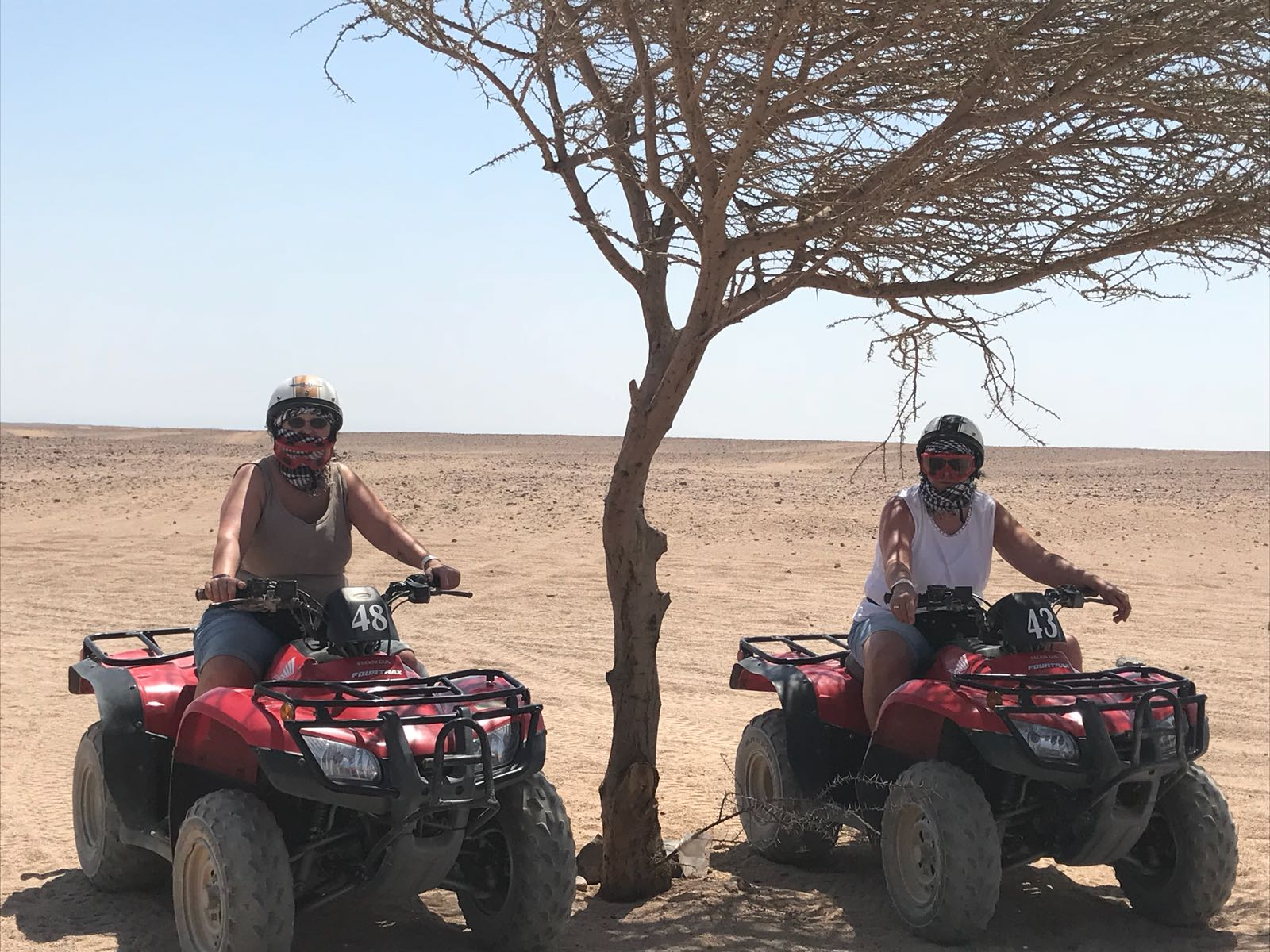 6-stündige Mega-Safari mit Quad und Jeep ab Soma Bay/Safaga