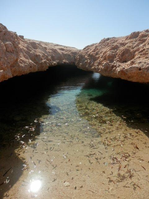 Private Schnorcheltour bei Ras Mohammed oder Tiran Insel