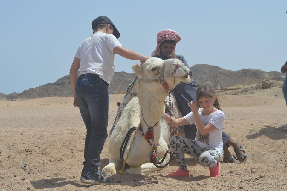 Safari mit Kamelritt ab Sharm El Sheikh Hafen
