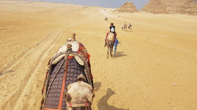 Ausflug zu den Stufenpyramiden von Sakkara und Pyramiden von Gizeh ab Hafen von Port Said