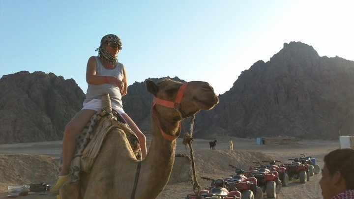 Kamelreiten und Sterne beobachten in Sharm El Sheikh
