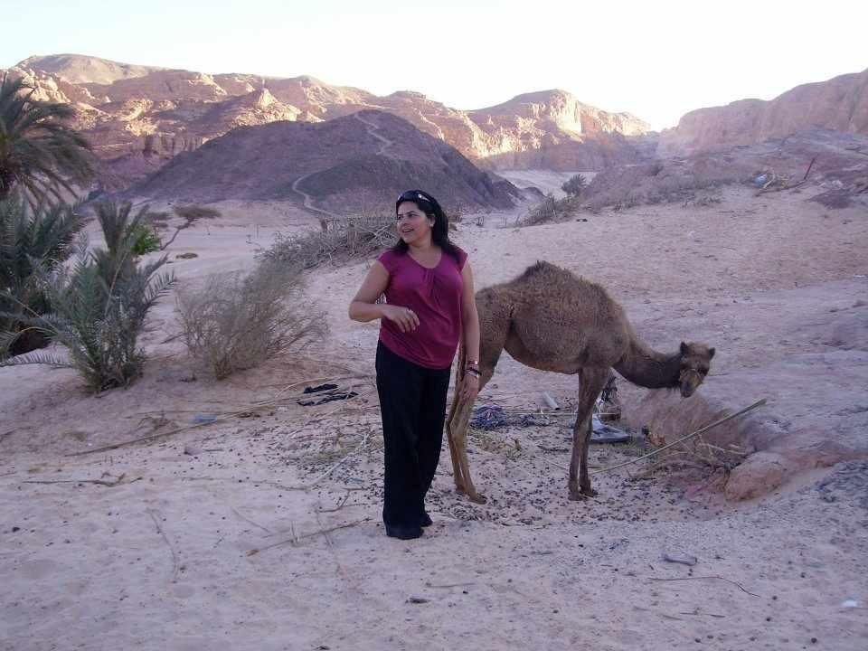 Quad fahren El Gouna   Quad safari tour 3 Stunden El gouna